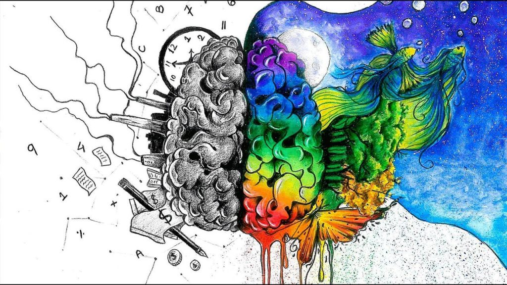 Left vs Right brain hemispheres where left is in black and white, more structured manner. And the right hemisphere depicted with colorful flows and creative feel.