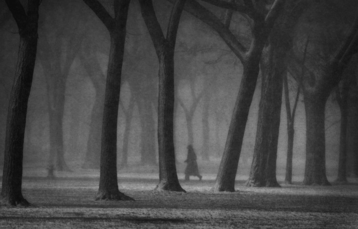 """Photography by Andrea Bruce """"The Walk"""" in black and white perfectly accompanying Robert Frost Poem"""