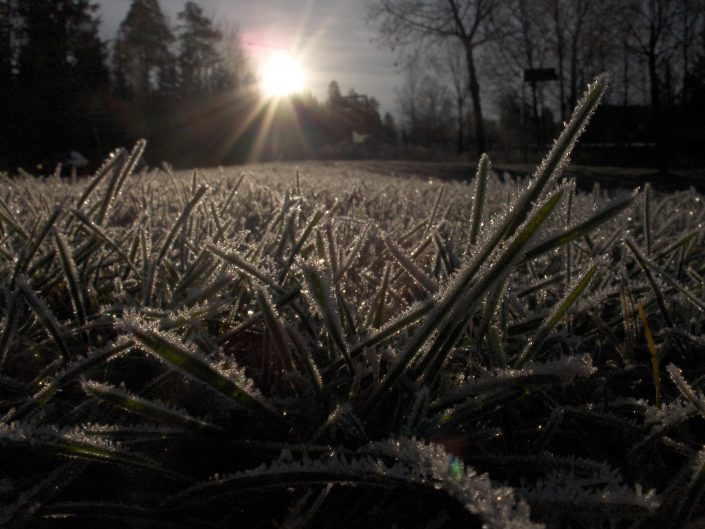 2011 Lappeenranta, Finland Macro shot of morning frost on the grass.