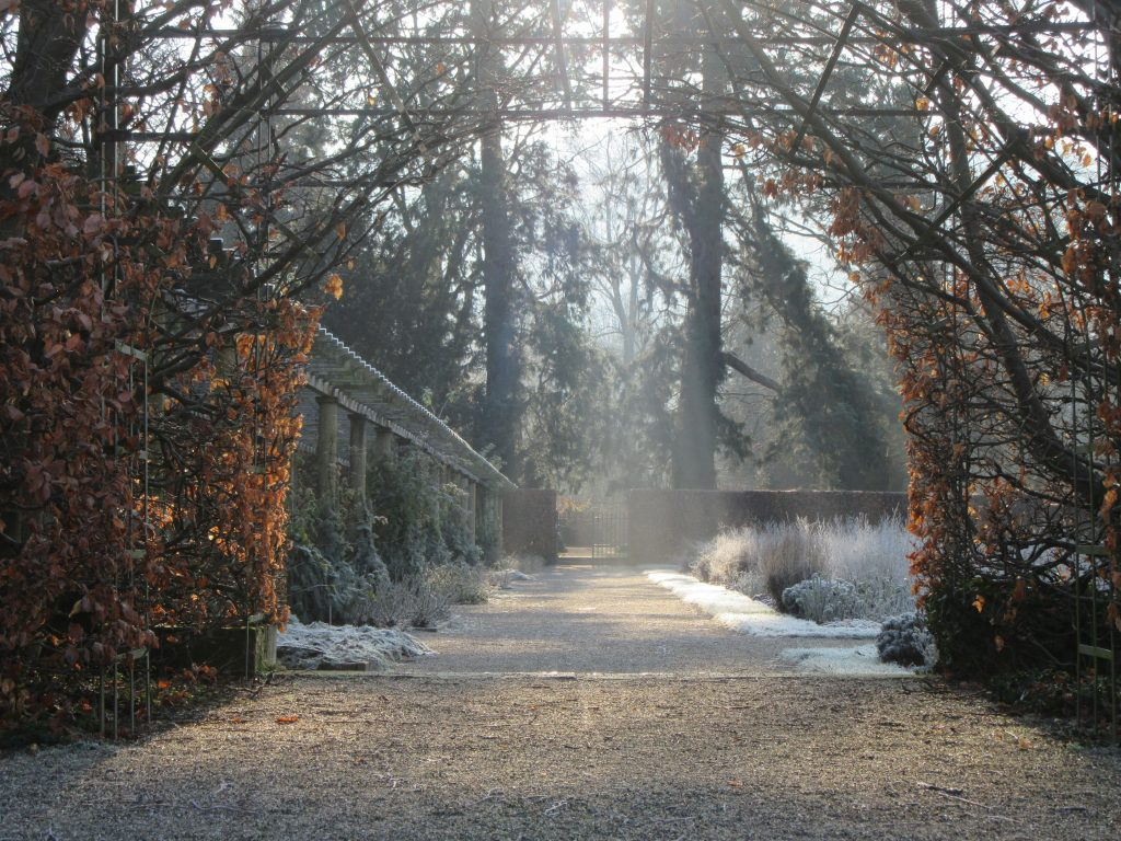Arc and early sun above in the trees in Rose park at Baden-Baden in winter sunny morning