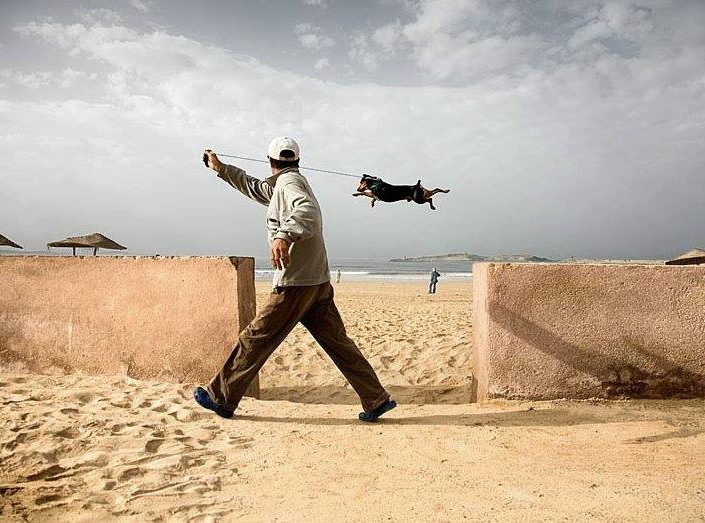 Stop motion Shot of a dog jumping in the air while being walked by a man. Alvaro Sanchez - Montañes