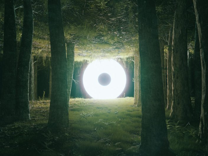 Photo manipulation of light and forest. Ground is mirrored and is at both up and down.