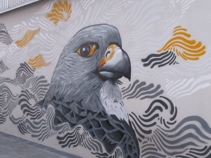 Street Art painting of Pigeon in Reykjavik, Iceland