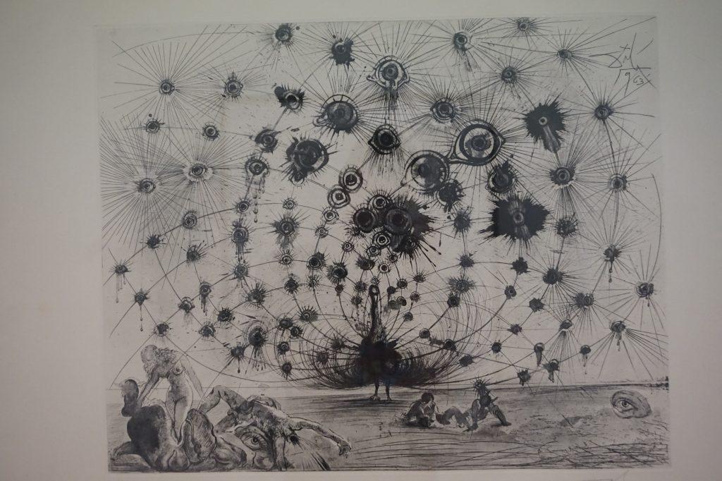 Peacock - Pencil Drawing by Salvador Dali