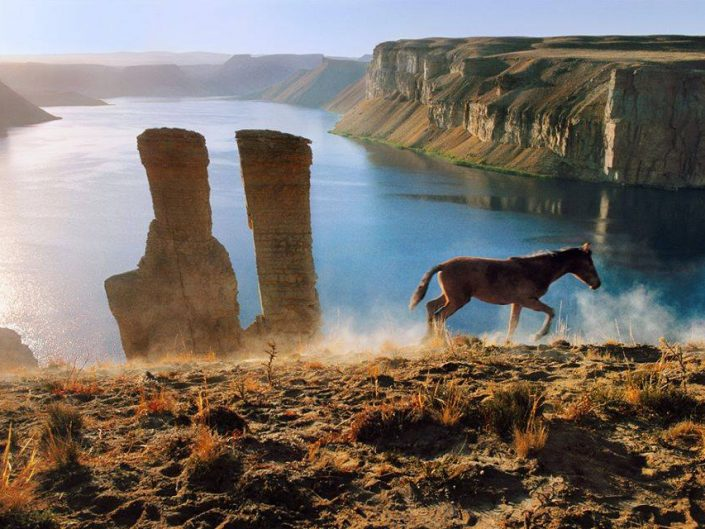 Wild Horse in a Canyon background in Afganistan apparently. Photography by Steve McCurry