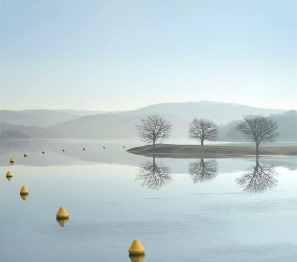 Lauren Marsolie photo of a geometric landscape of bay with buoys in the water and trees on the ground