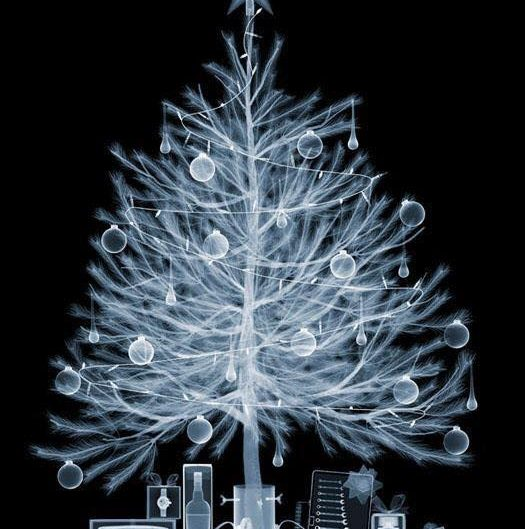Xmas Tree X-Rayed by Nick Veasey