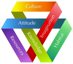 All topics intertwined. More middle like reads: Attitude, Knowledge and Imagination. Outer circle - Culture, Habitat, Resources - this is Tina Seelig's Innovation engine