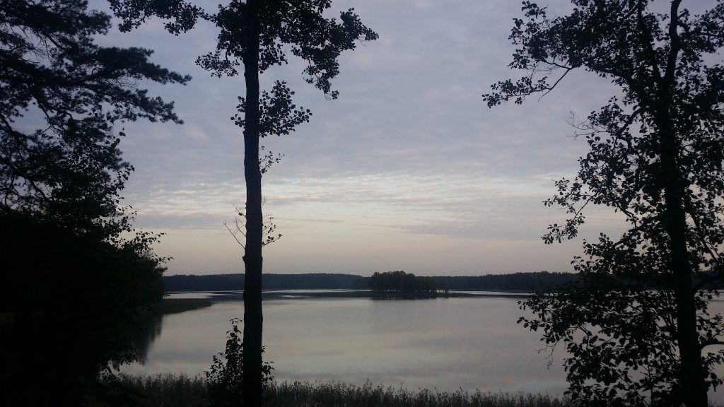 Island in Bebrusai lake, Lithuania, morning view
