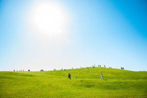Random picture of People on sunny green grass. Vipassana talking starts