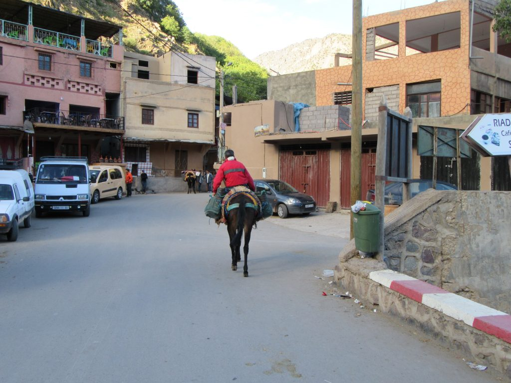 Local dude riding a donkey in Imlil