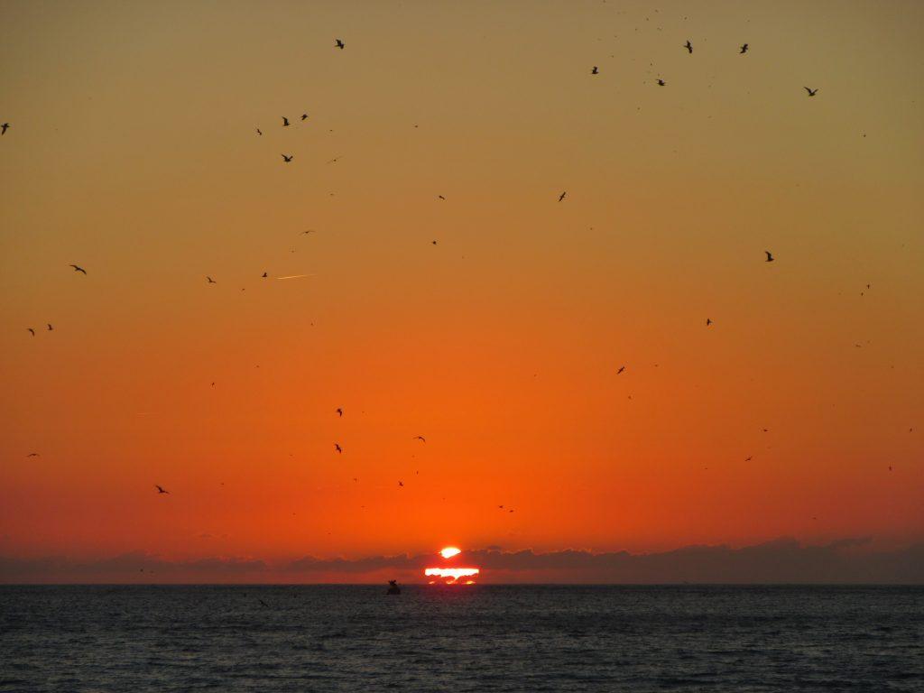 Setting Sun in Safi, Morocco 2018 October