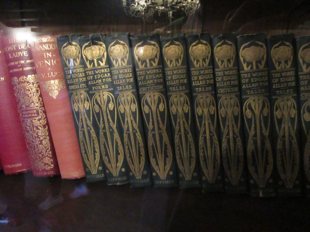 Books on the Shelf in Dracula's Castle