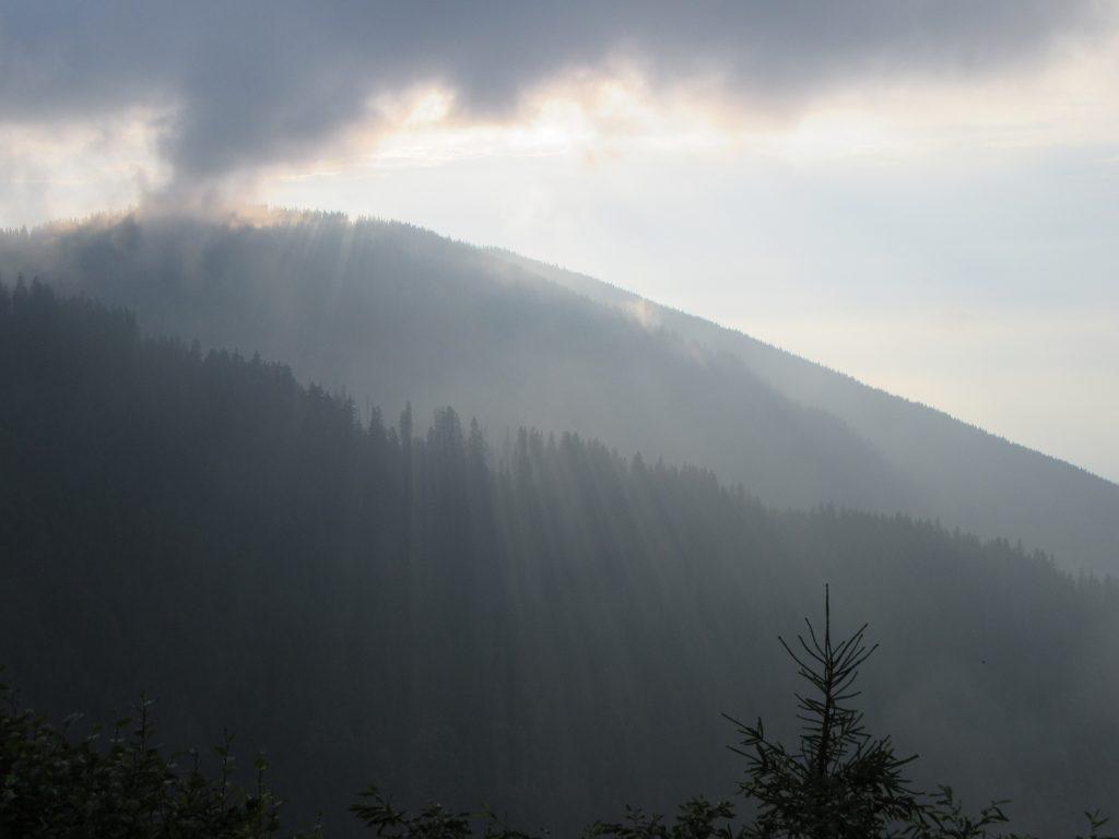 Shadows cast by tree line in Transfagarasan, Romania